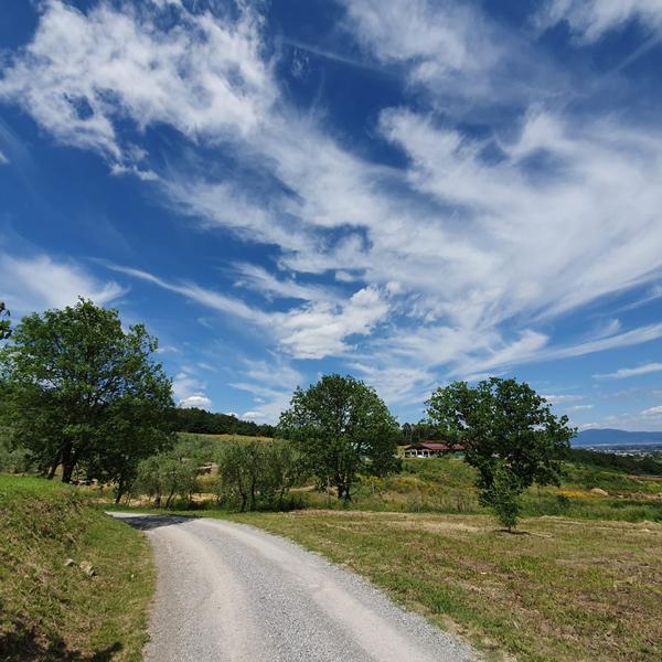 fattoria il cassero di Serravalle